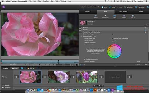 Ekran görüntüsü Adobe Premiere Elements Windows 8.1