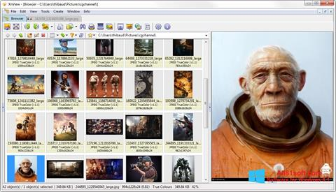 Ekran görüntüsü XnView Windows 8.1