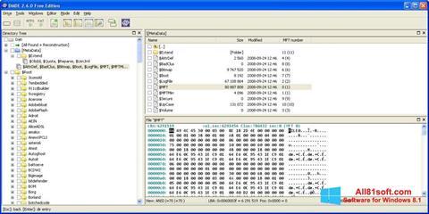 Ekran görüntüsü DMDE Windows 8.1