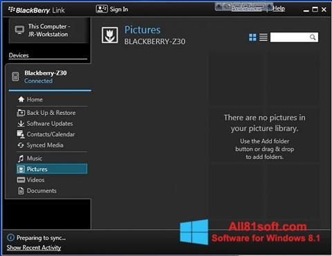 Ekran görüntüsü BlackBerry Link Windows 8.1