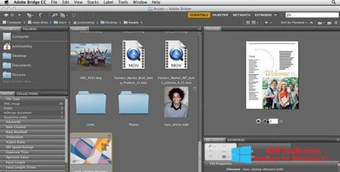 Ekran görüntüsü Adobe Bridge Windows 8.1