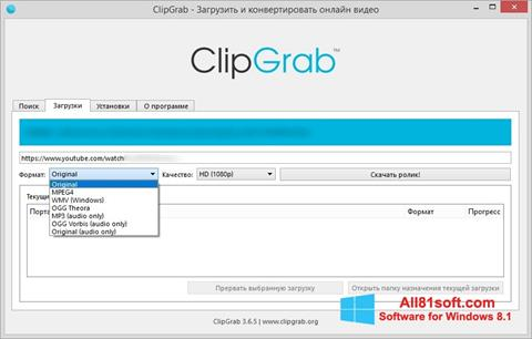 Ekran görüntüsü ClipGrab Windows 8.1