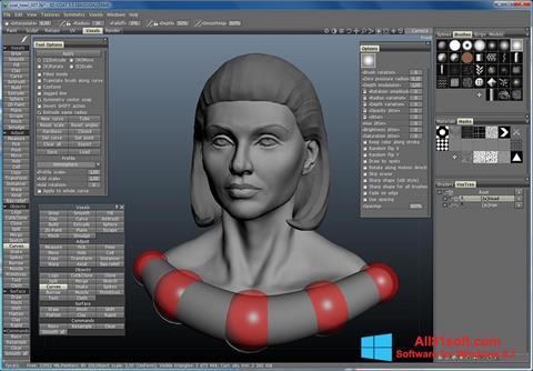Ekran görüntüsü 3D-Coat Windows 8.1