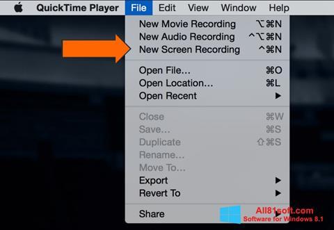 Ekran görüntüsü QuickTime Windows 8.1