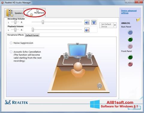 Ekran görüntüsü Realtek Audio Driver Windows 8.1