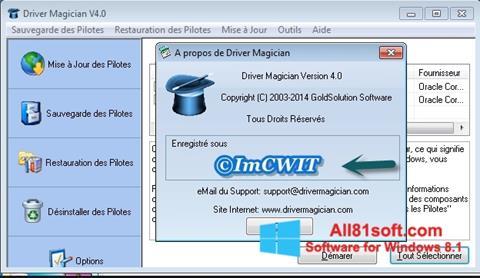 Ekran görüntüsü Driver Magician Windows 8.1
