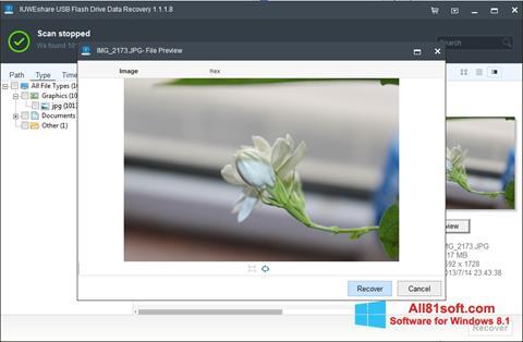 Ekran görüntüsü USB Flash Drive Recovery Windows 8.1