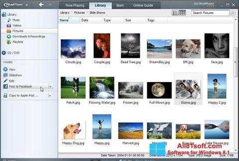 Ekran görüntüsü RealPlayer Windows 8.1